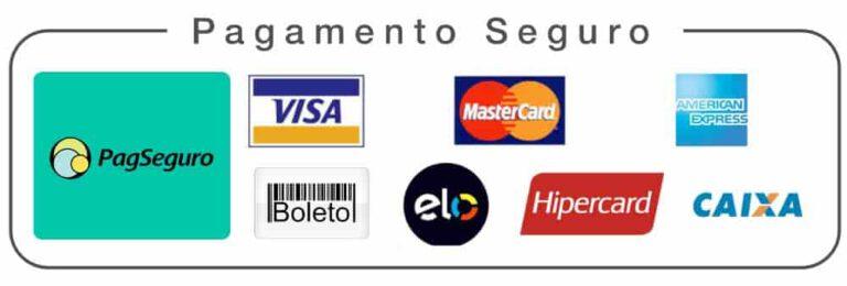Segurança de pagamento Pagseguro